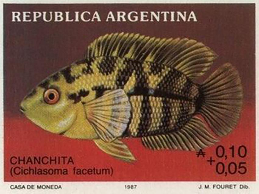 Australoheros facetus on stamp